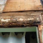 NW Portland - As licensed Construction Defect Specialists we fix all levels of structural rot.